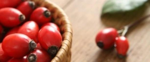 Rośliny bogate w witaminy i minerały