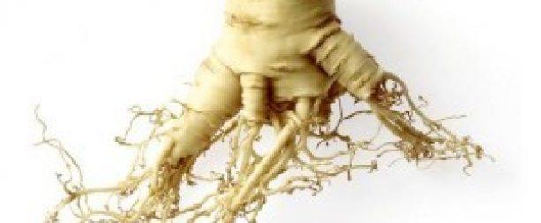 Rośliny adaptogenne pomocą w walce ze stresem