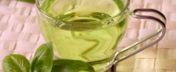 Zielona herbata – smacznie i zdrowo!