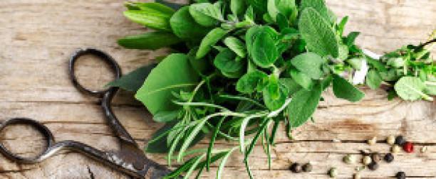 Zdrowa dieta, czyli zioła w kuchni